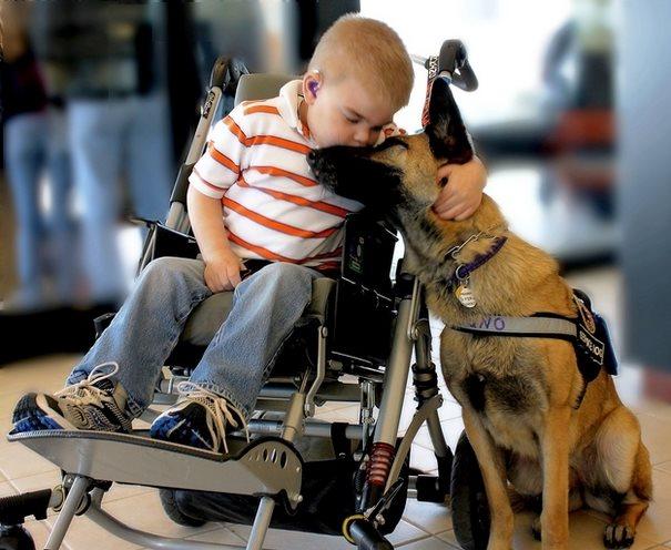louko_and_dog