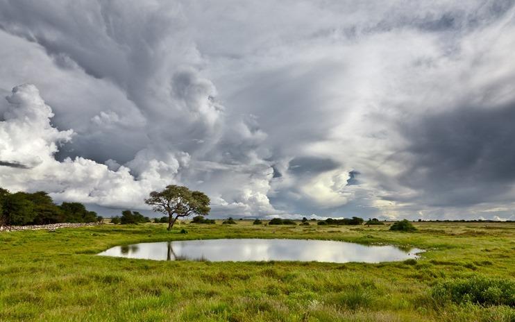 landscape38